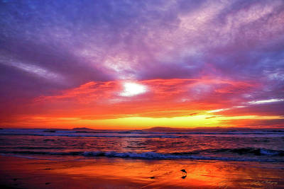 Photograph - Sandpiper Sunset Ventura California by John A Rodriguez