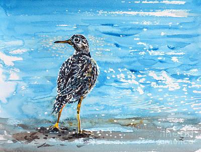 Painting - Sandpiper by Zaira Dzhaubaeva