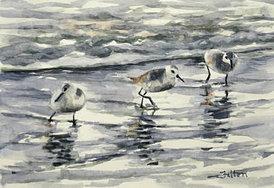 Sandpipers 3  12-11-17 Art Print
