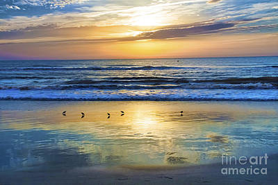 Sandpiper Mixed Media - Sandpipers At Sunrise by C W Hooper
