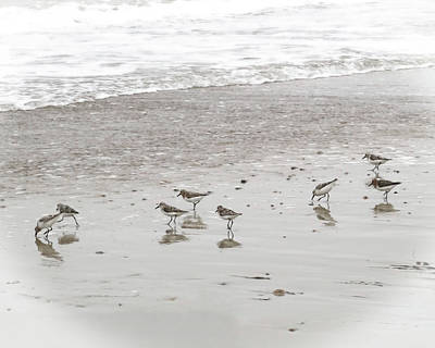 Sandpipers Print by Brooke T Ryan