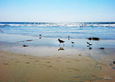 Photograph - Sandpipers In The Tide by Diana Haronis