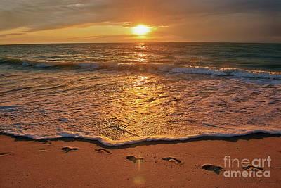 Photograph - Sandprints by David Arment