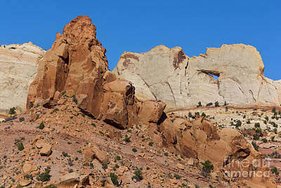 Photograph - Sandstone Arch At Capitol Reef by Yva Momatiuk John Eastcott