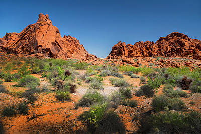 Photograph - Sandstone Formations Valley Of Fire by Frank Wilson