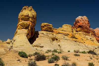 Photograph - Sandstone Fortress Valley Of Fire by Frank Wilson