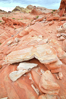 Photograph - Sandstone Heart In Valley Of Fire by Ray Mathis