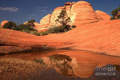 Photograph - Sandstone Reflections After The Rain by Adam Jewell