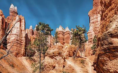 Photograph - Sandstone Sentinels by John M Bailey