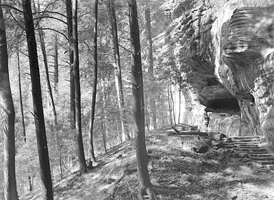 Photograph - Sandstone Steps In The Woods by William Wetmore