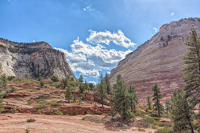 Photograph - Sandstone Valley by John M Bailey
