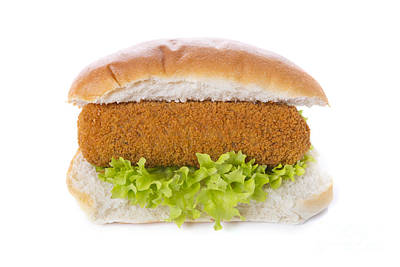 Netherlands Photograph - Sandwich With Dutch Meat Croquette, Isolated On White by Sara Winter