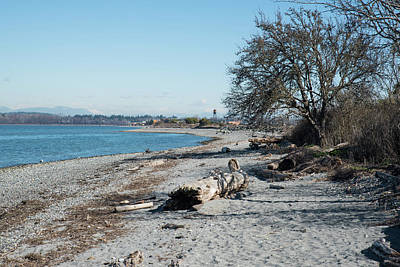 Photograph - Sandy Beach At Semiahmoo by Tom Cochran