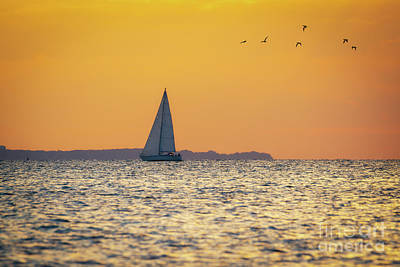 Photograph - Sandy Hook Bay Sunset  by Michael Ver Sprill