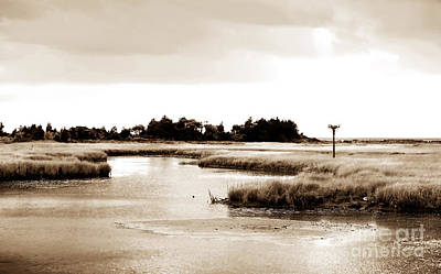 Photograph - Sandy Hook Inlet by John Rizzuto