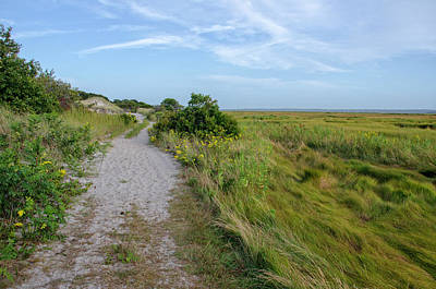Photograph - Sandy Neck Trail by Donna Doherty