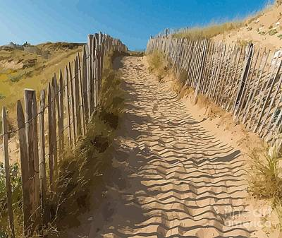 Sand Fences Mixed Media - Sandy Pathway To The Beach by Clive Littin