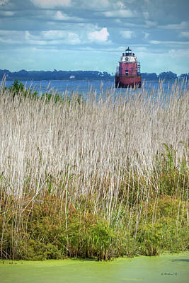 Photograph - Sandy Pt Shoal Lighthouse With Marsh Grass by Brian Wallace