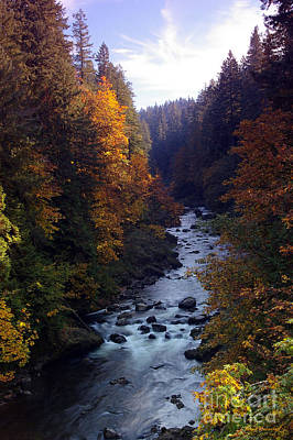Photograph - Sandy River Fall Foilage by Steve Warnstaff