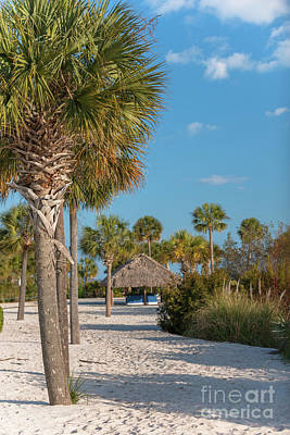 Photograph - Sandy Toes And Palmetto Breezes by Dale Powell