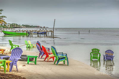 Photograph - Sandy Toes  by David Zanzinger