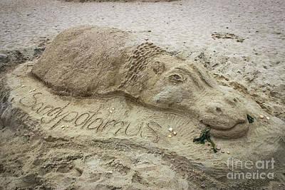Photograph - Sandypotamus - Sand Sculpture by Colleen Kammerer