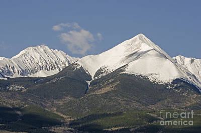 Photograph - Sangre De Cristo Close - Up by Kelly Black