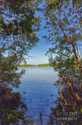 Photograph - Sanibel Bay View by Frank Williams