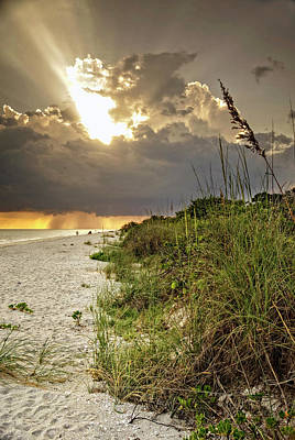 Photograph - Sanibel Dune At Sunset by Greg Mimbs