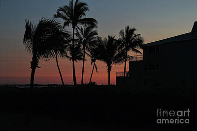 Photograph - Sanibel Evening by Deborah Benoit