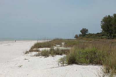 Photograph - Sanibel Island by Gary Gunderson