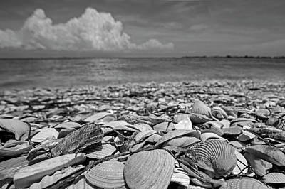 Photograph - Sanibel Island Sea Shell Fort Myers Florida Clouds Black And White by Toby McGuire