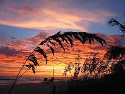 Ocean Sunset Photograph - Sanibel Island Sunset by Nick Flavin
