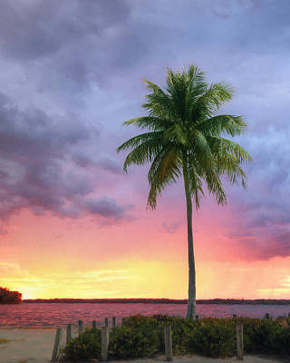Sanibel Palm Tree Art Print by Lori Deiter