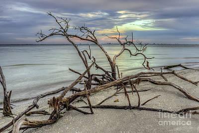 Photograph - Sanibel Paradise by Scott Wood