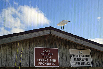 Photograph - Sanibel Pier by Laurie Perry
