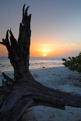 Sanibel Sunrise II Print by Steven Ainsworth