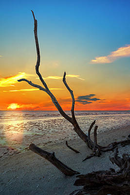 Driftwood Photograph - Sanibel Sunrise by Marvin Spates