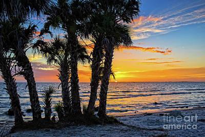Photograph - Sanibel Sunset by Edward Fielding