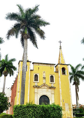 Photograph - Santa Anna Cathederal In Merida Mexico by Susan Vineyard