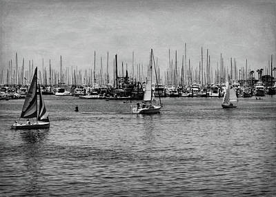 Photograph - Santa Barbara Harbor Black And White by Judy Vincent