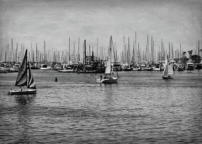Photograph - Santa Barbara Harbor Black And White by Judy Vincent