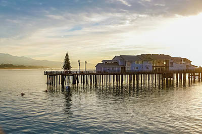 Photograph - Santa Barbara Pier Christmas Tree by Kathleen McGinley