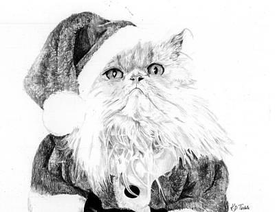 Santa Cat Original