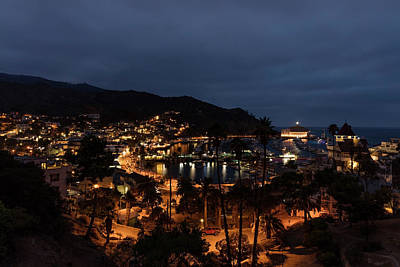 Santa Catalina Island Nightscape Art Print by Angela A Stanton