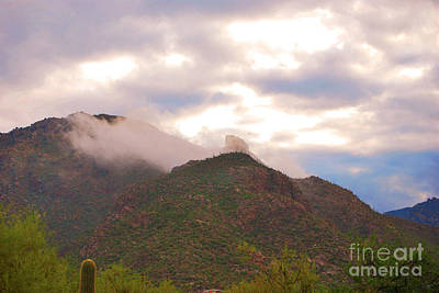 Photograph - Santa Catalina Mountains Arizona by Donna Greene