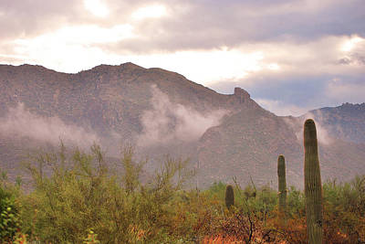 Santa Catalina Mountains II Art Print by Donna Greene