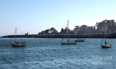 Photograph - Santa Cruz Sailboats by Gregory Dyer