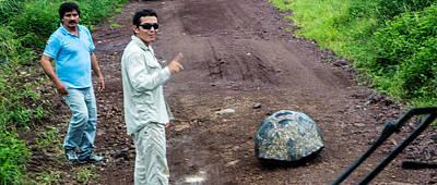 Photograph - Santa Cruz Tortoise Traffic Obstruction by Harry Strharsky