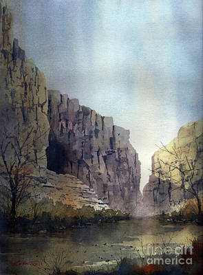 Painting - Santa Elena Canyon On The Rio Grande by Tim Oliver